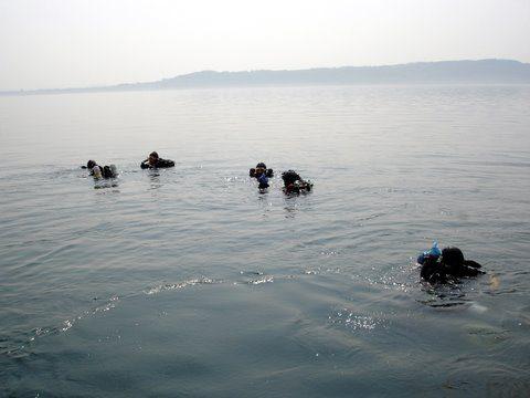 Plongée sur le tombant d'Abyss à Neuchatel