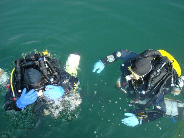 Plongée au lac du Bourget sur le site de plongée des Meuniers