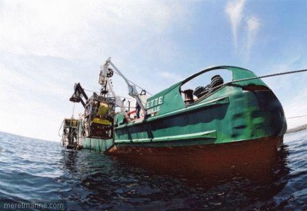 La torpille du Dornier de Port Crox a-t-elle disparu ?